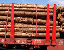 Electratherm - Biomass